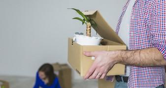 Comment déménager des plantes ?